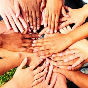 A circle of hands meet at a center point.
